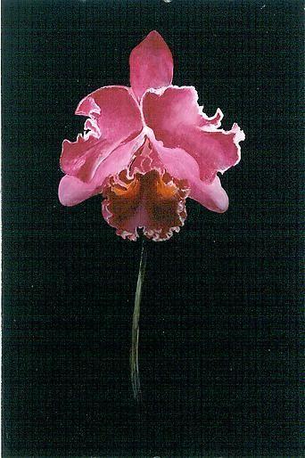Untitled 2002 oil on panel