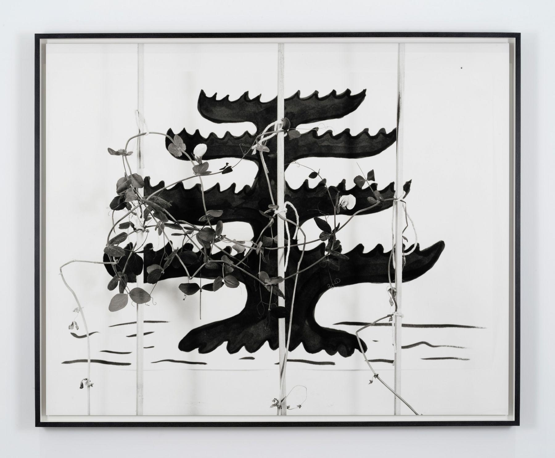 Marina Pinsky, Pine Tree Flag 2, 2017