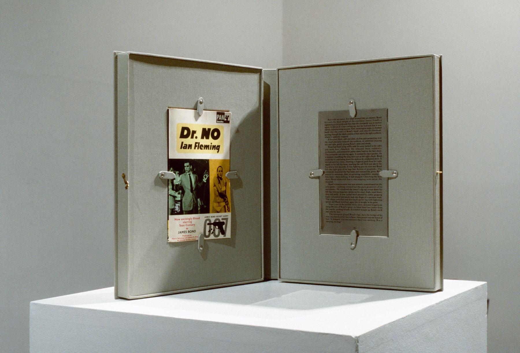 Rodney Graham, Dr. No, 1991-1993