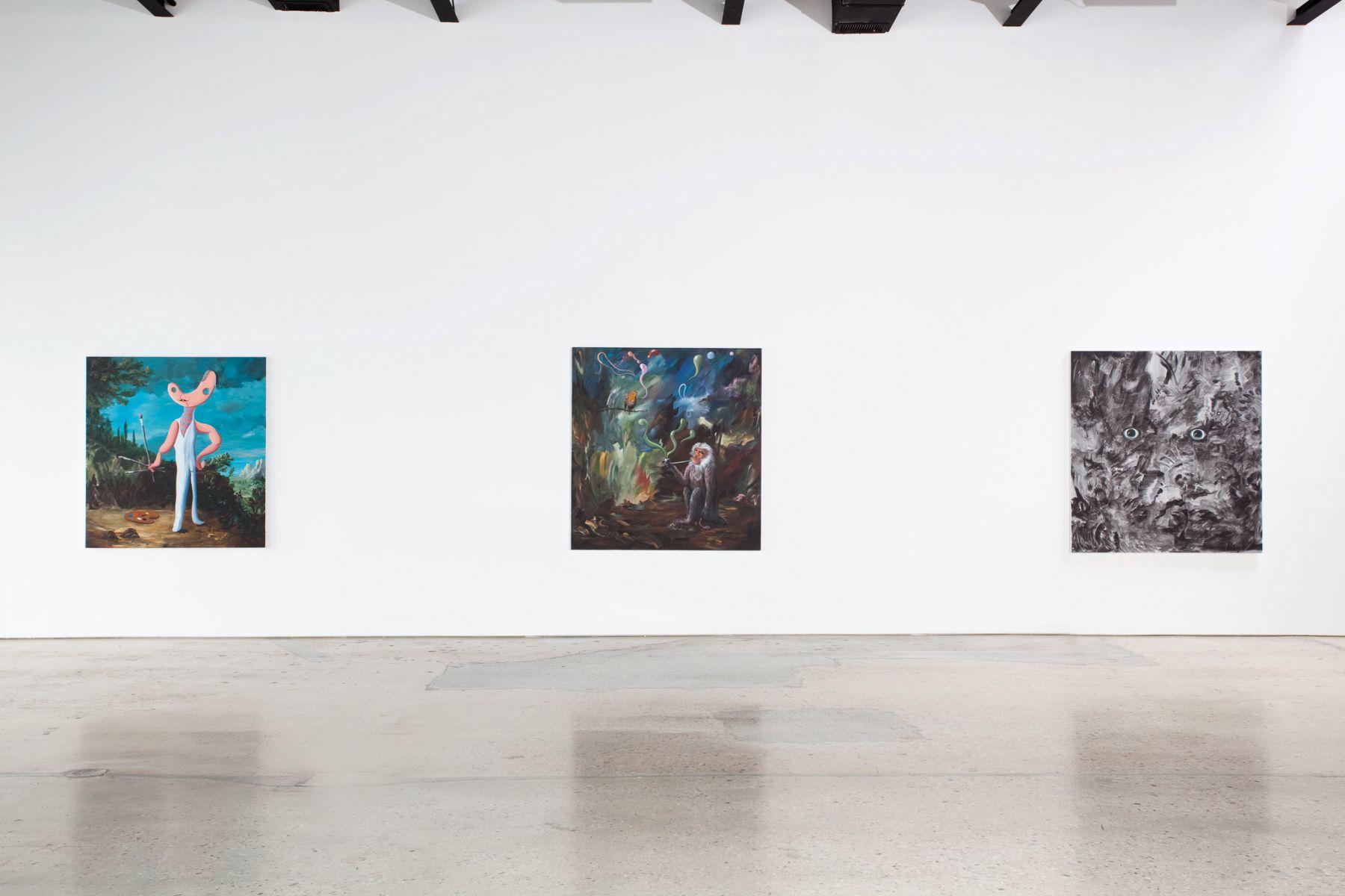 Djordje Ozbolt, Installation at 303 Gallery, 2011