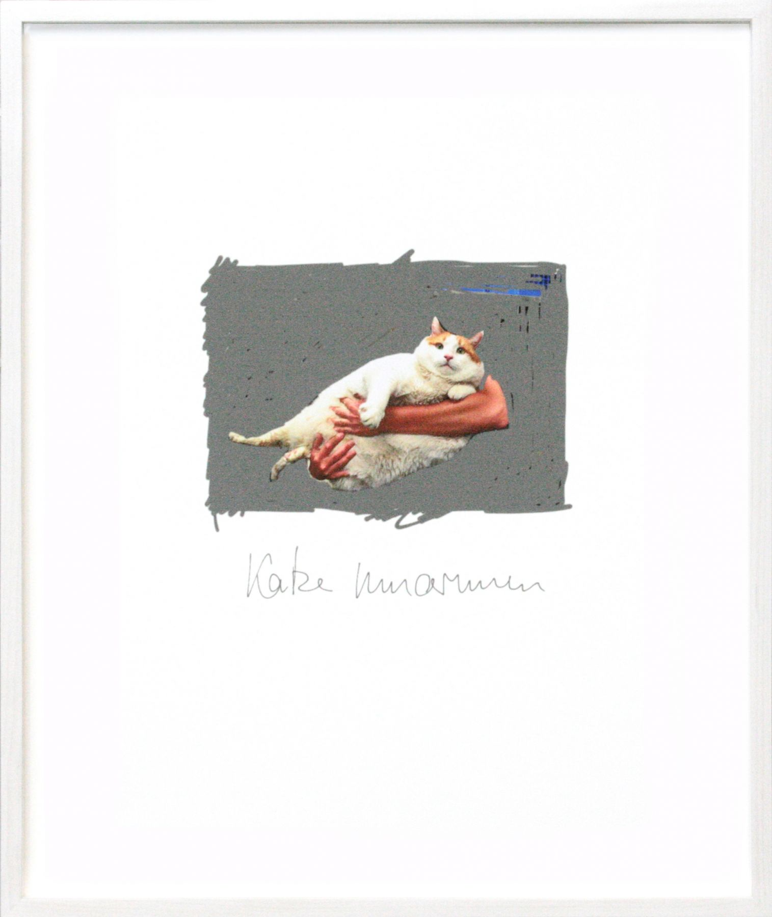 Katze umarmen, 2013