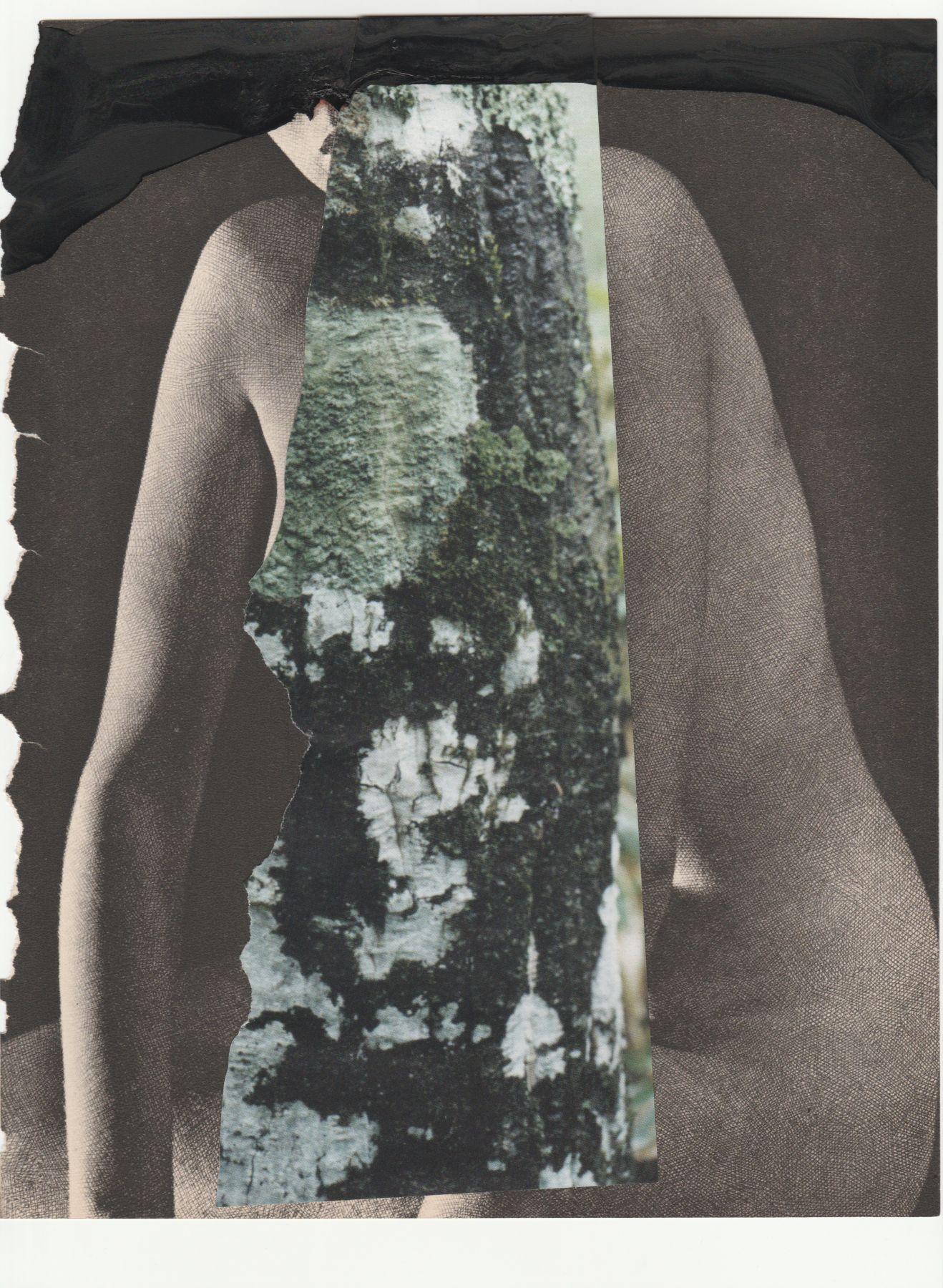 #18, Sondra Meszaros, 2016