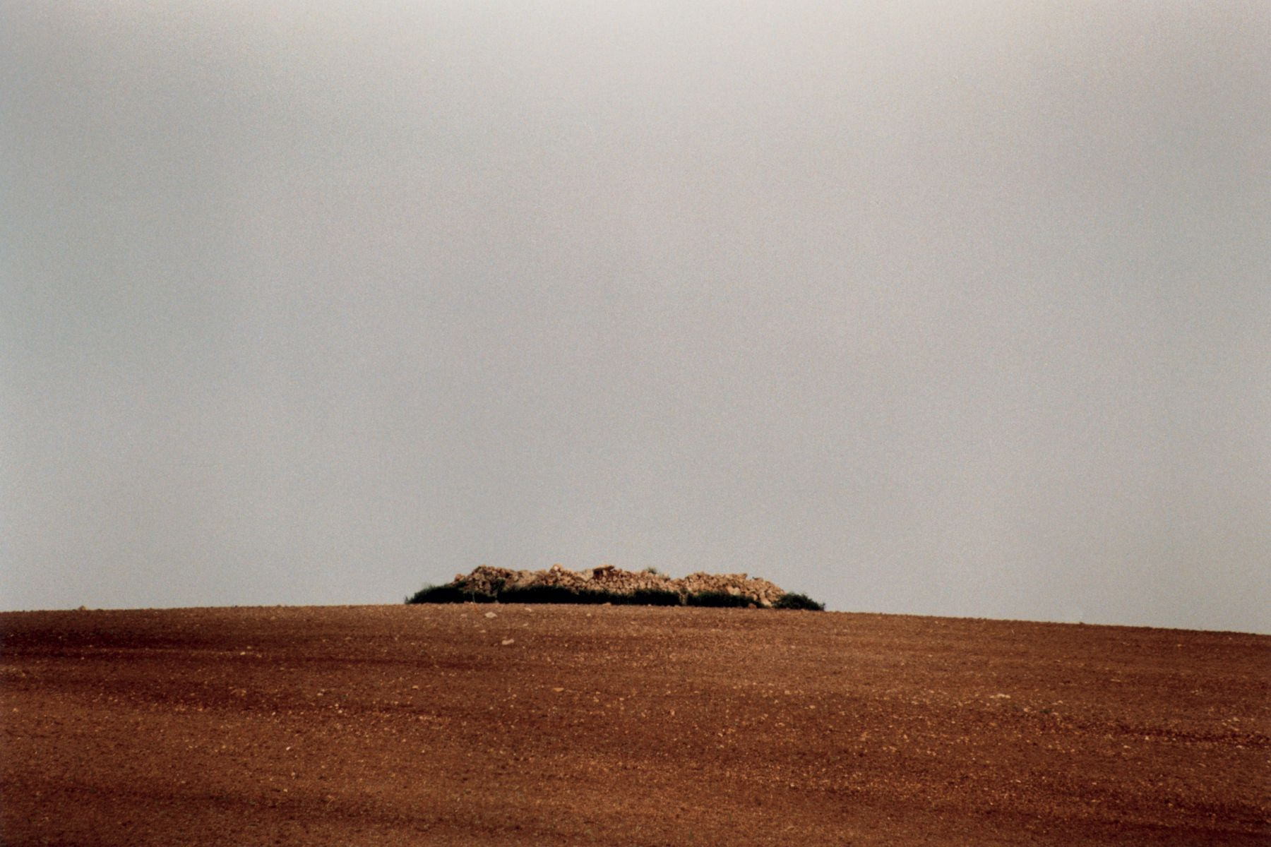 Kultivierte Landschaft II, 2003