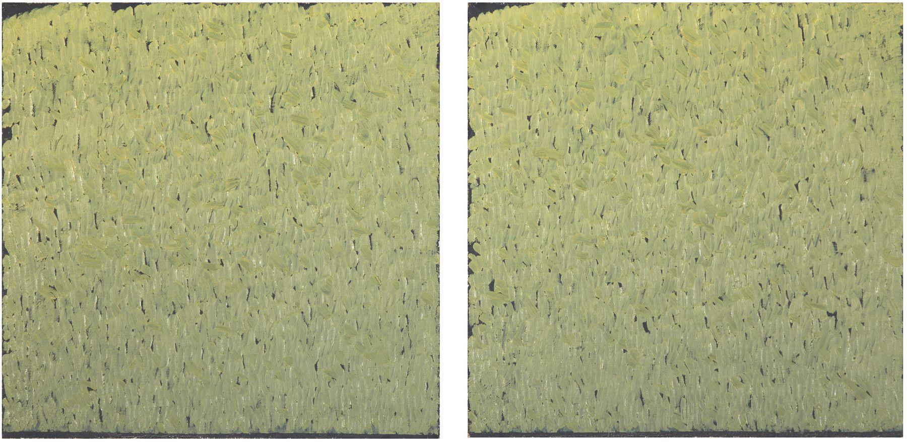 New Light Locks Gallery Warren Rohrer Of Yellow 4