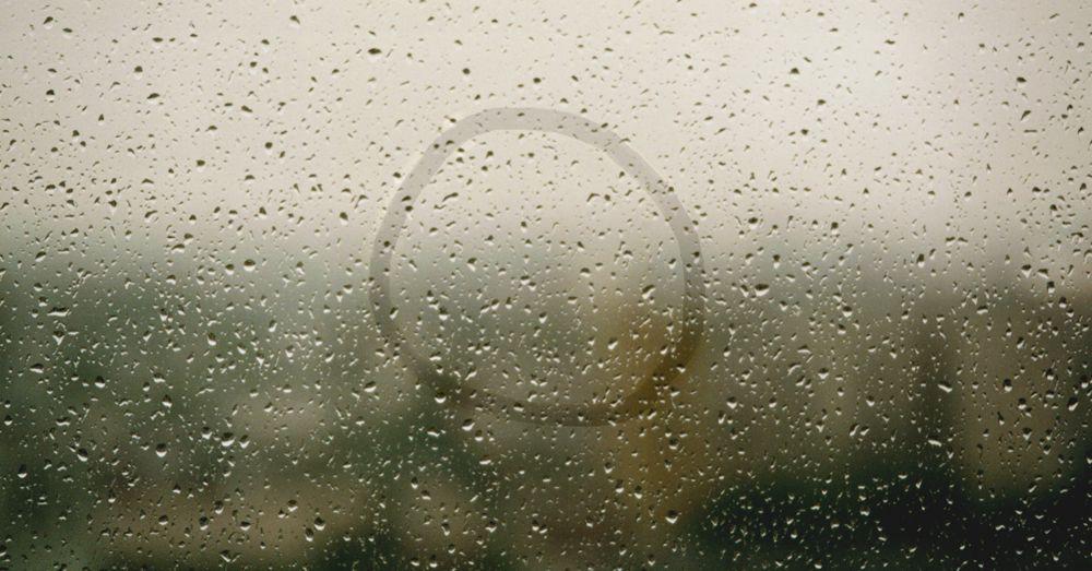 Circle in the Rain Eileen Neff