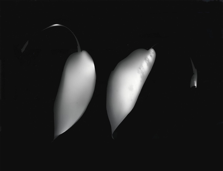 Ray Metzker Photogram, 1991