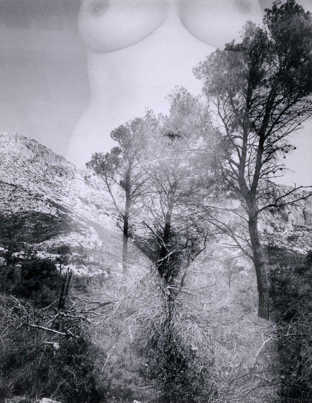 Harry Callahan | Aix-en-Provence (1958) | Available for