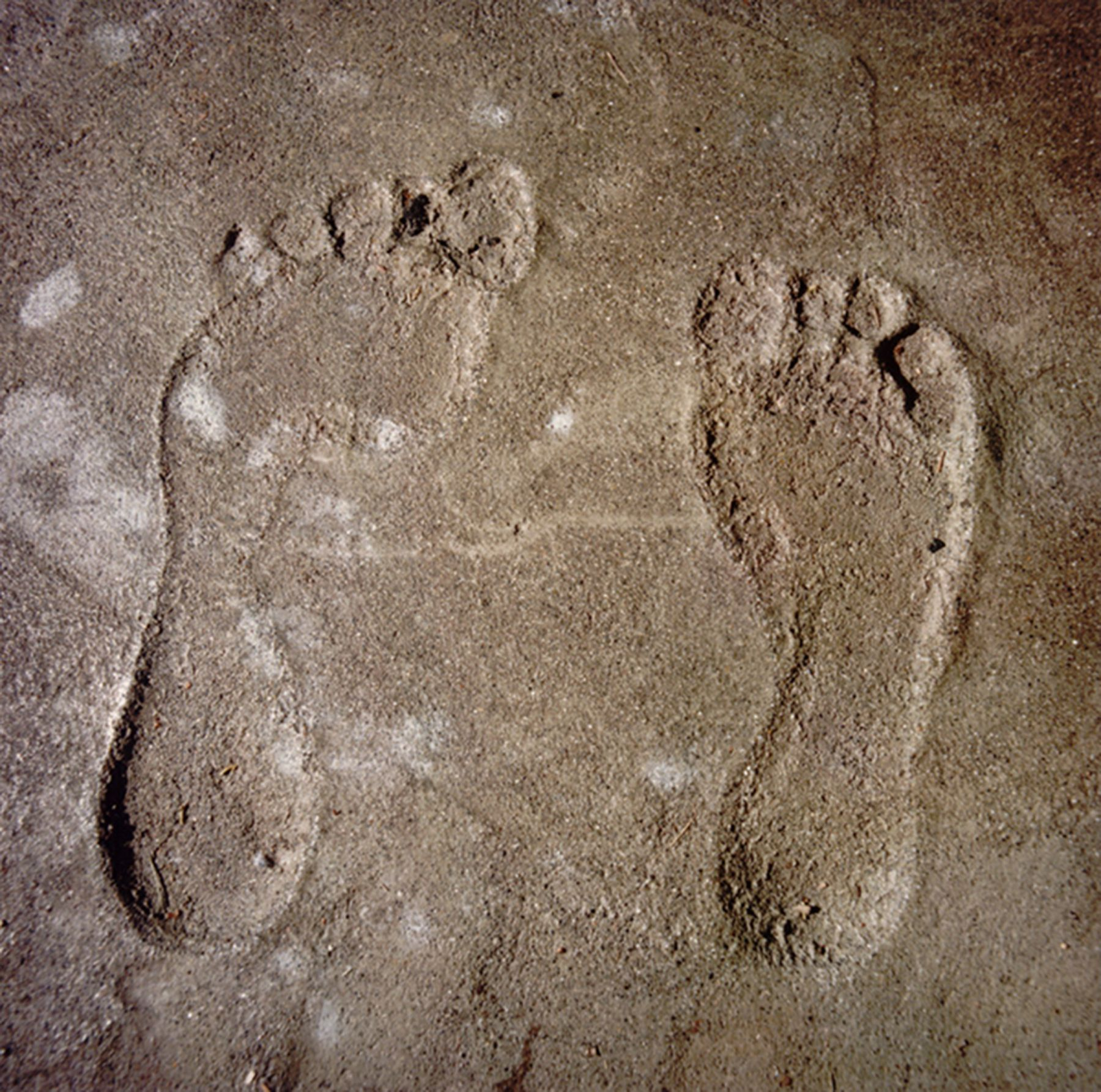 David Graham Feet, Placentia Island, ME, 1995-96