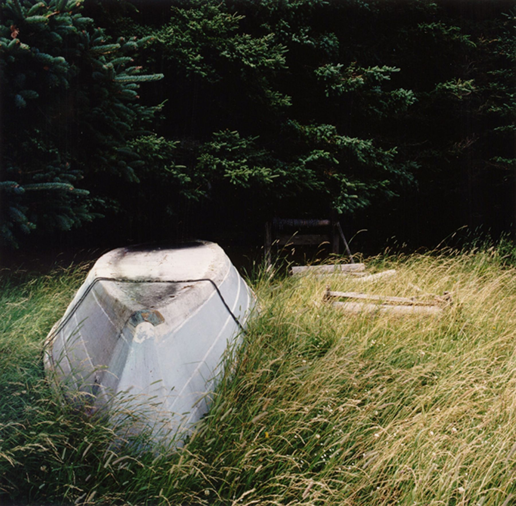 David Graham Dory, Placentia Island, ME, 1995-96