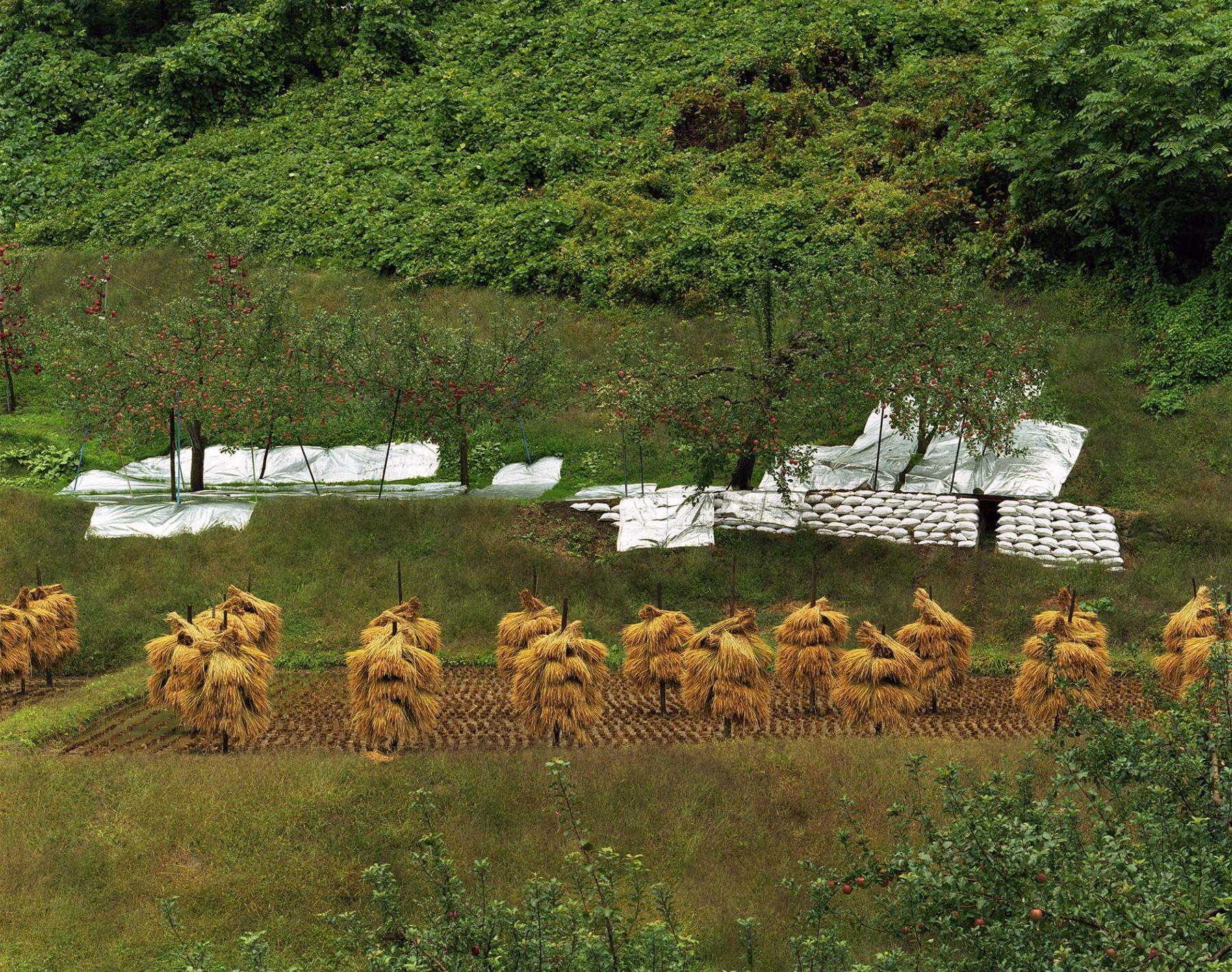Toshio Shibata Kuroishi City, Aomori Prefecture, 2006