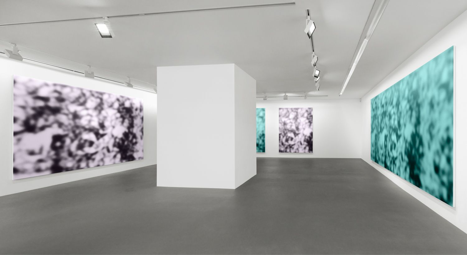 Installation view, Jeff Elrod, Figment, Vito Schnabel Gallery, St. Moritz, 2016