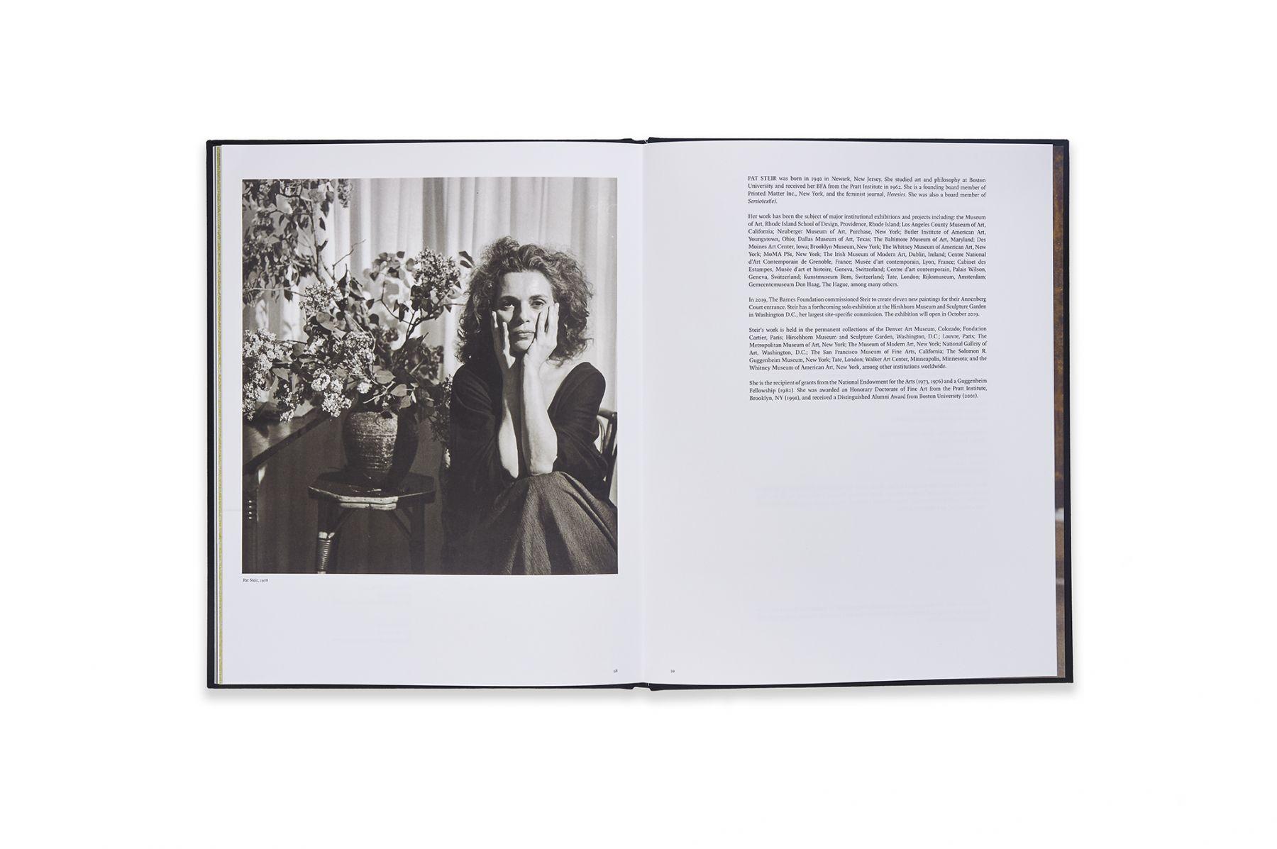 Image of Pat Steir: Paintings Catalogue spread