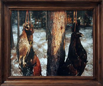 Savukoski, 1994, 32.28 x 39.37 inch Chromogenic Print, edition of 20