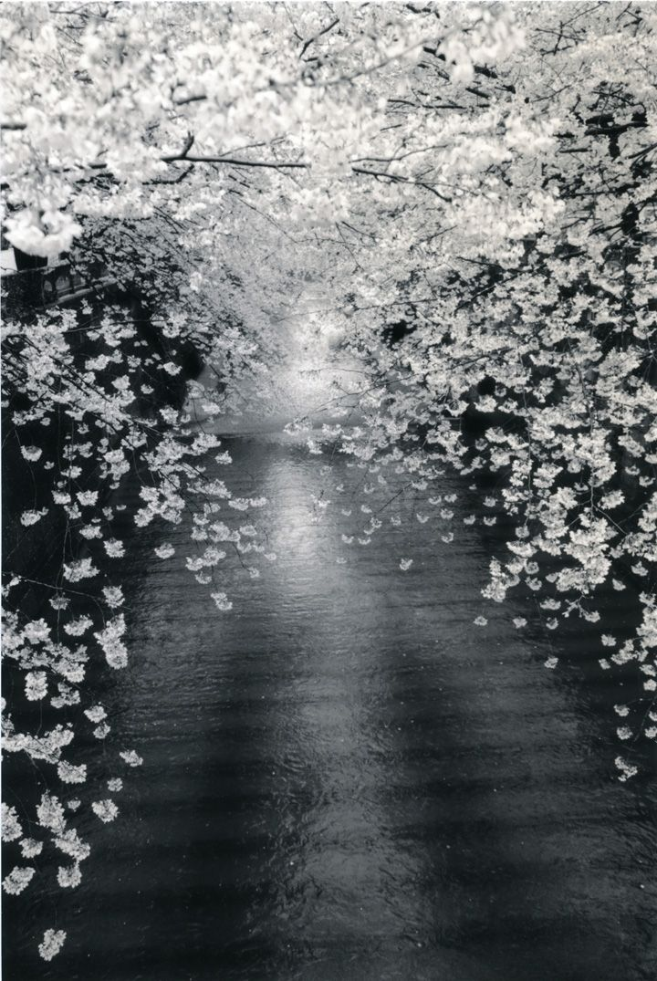 Untitled #1534from the seriesKawa=Flow, 10.25 x 6.75 inch gelatin silver printwith mixed media