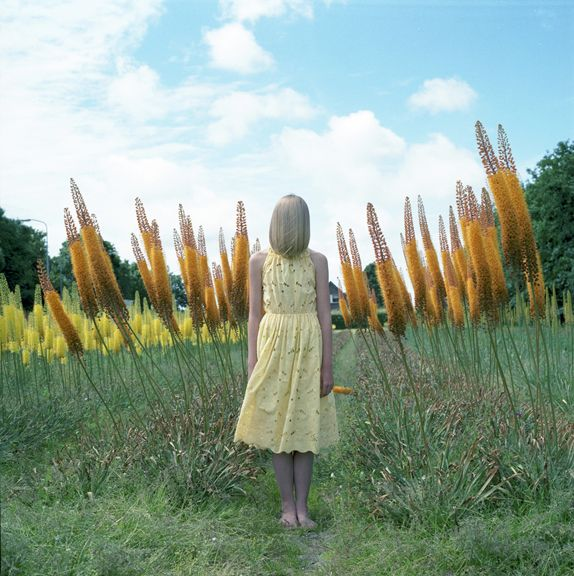 Untitled (0445),2014,Chromogenic print,28 x 28 inches,Edition of 10