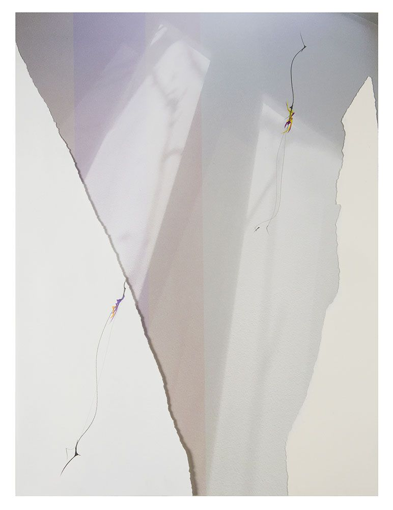 LC18_247, 2018. Archival pigment print, mixed media, and torn rag paper, 22 x 16 1/2 inches.