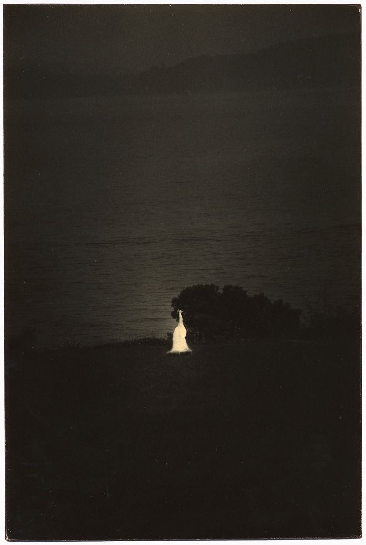 Untitled #712from the seriesA Box of Ku, 9 x 6.4 inch gelatin silver printwith mixed media