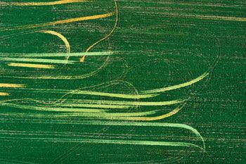 Alex MacLean, Tractor tracks in a field of tomatoes, 1990, 20 x 24 inch chromogenic print, Signed and titled on verso