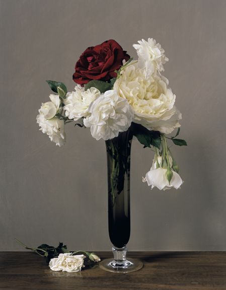 Photograph by Sharon Core titled 1879 from the series 1606-1907 of a floral still life arranged in the style of a classical painting