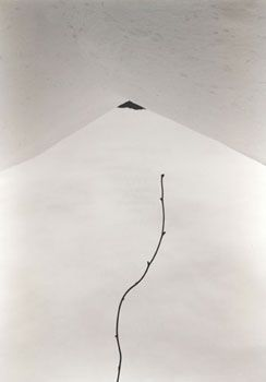 Untitled #1529 (from Kawa = Flow), 2008, 9.25 x 6.5 inch Gelatin Silver Print, Signed, titled, dated, editioned and stamped on verso, Edition of 20