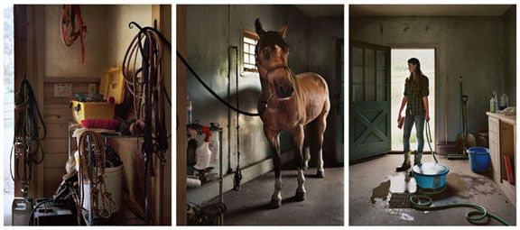 Cameron, 2012. Three-panel archival pigment print, available as 24 x 60 or 40 x 90 inches.