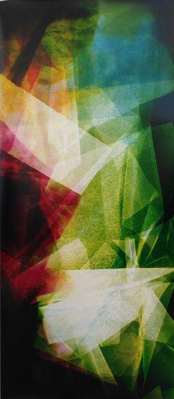 Lattice (Ambient) Tropical Psychedelics III, 2014,67 x 30 inchunique chromogenic photogram