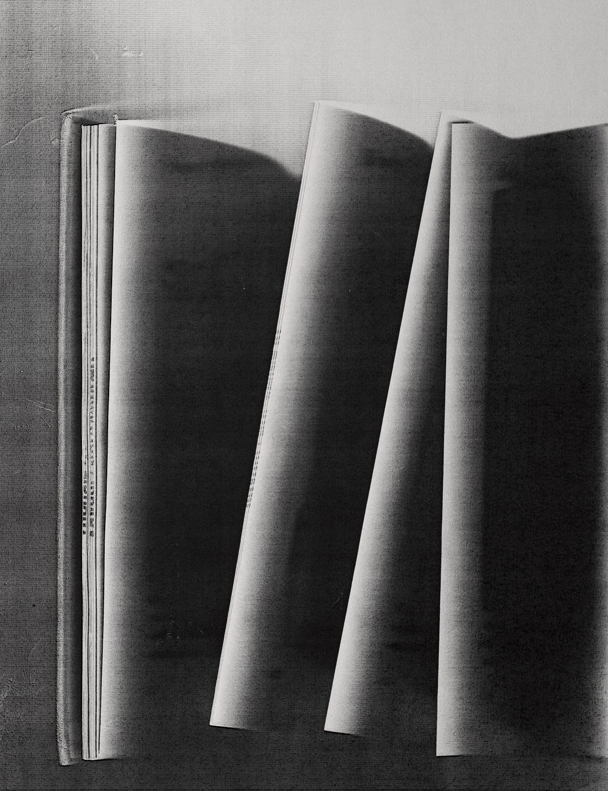 Chiaroscuro, from the series Library Copies, 2017. Archival pigment print, 30 x 24 inches.