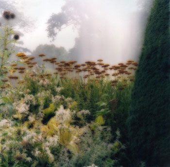 Fode Abbey, England, 2005 (9-05-25c-11), 19 x 19 and 28 x 28 inch Chromogenic print, Edition of 15 per size