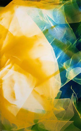 Lattice (Ambient) #112, 2014, 47.5 x 30 inch Chromogenic Print, from the series Lattice (Ambient), Unique