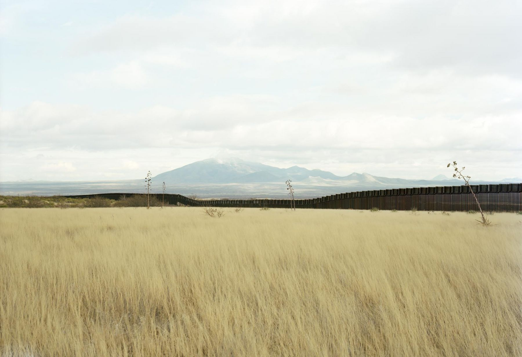 Untitled (Border view south from grasslands), Hereford, Arizona, 2010, 39 x 55 or 55 x 77 inch chromogenic print