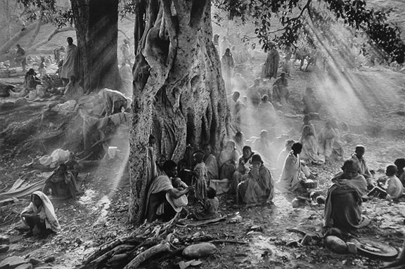 Refugees Hiding Under Trees to Avoid Government Airplane Surveillance, Tigray, Ethiopia, from the series Migrations, 1986. 16 x 20, 20 x 24, 24 x 35, 36 x 50 or 50 x 68 inch gelatin silver print
