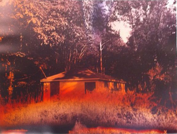 Interstate House (Spring), from the series Wildlife Analysis, 2010, 40 x 30 inch unique chromogenic print