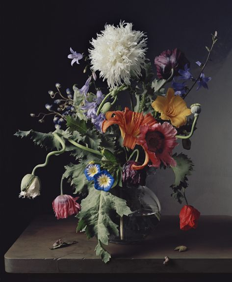 Photograph by Sharon Core titled 1665 from the series 1606-1907 of a floral still life arranged in the style of a classical painting