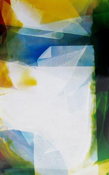 Lattice (Ambient) #123, 2014,48 x 30 inchuniquechromogenic photogram