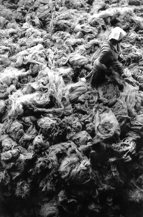 Raw Wool, Kazakhstan, from the series Workers 1991. 20 x 16, 24 x 20, 35 x 24, 50 x 36 or 68 x 50 inch gelatin silver print