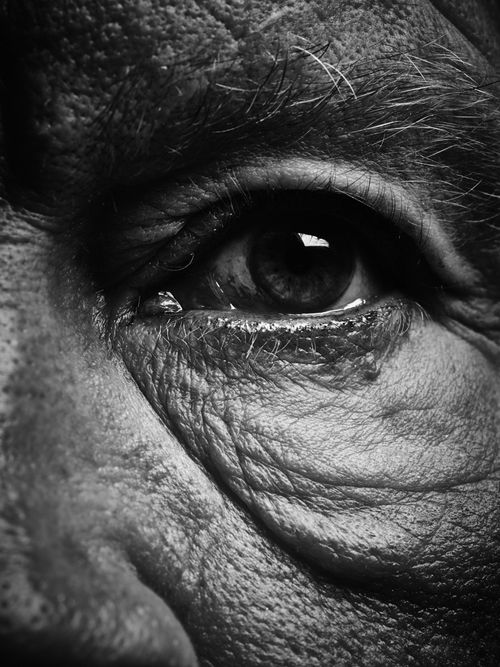Bill Brandt / Eyes (1960-1964), 2014, Archival pigment print, 9 x 8 inches