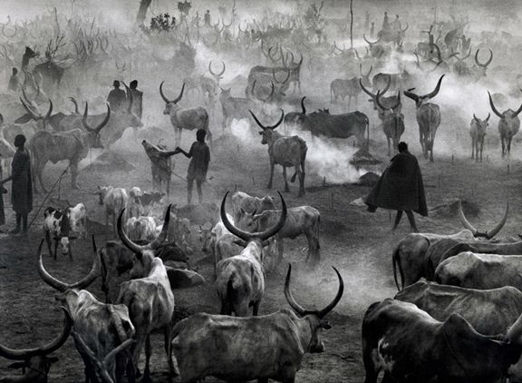 Dinka cattle camp of Amak, Southern Sudan, from the series Genesis, 2006. 16 x 20, 20 x 24, 24 x 35, 36 x 50 or 50 x 68 inch gelatin silver print