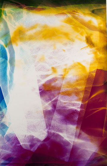 Lattice (Ambient) #110, 2014, 45 x 30 inch Chromogenic Print, from the series Lattice (Ambient), Unique