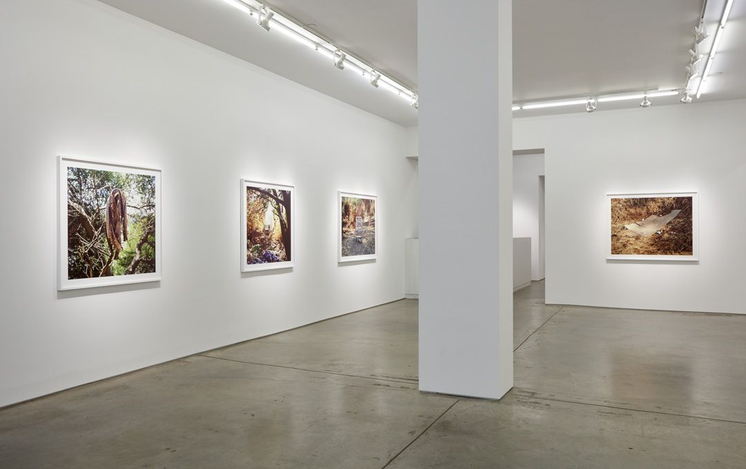 Anthony Hernandez, installation view.
