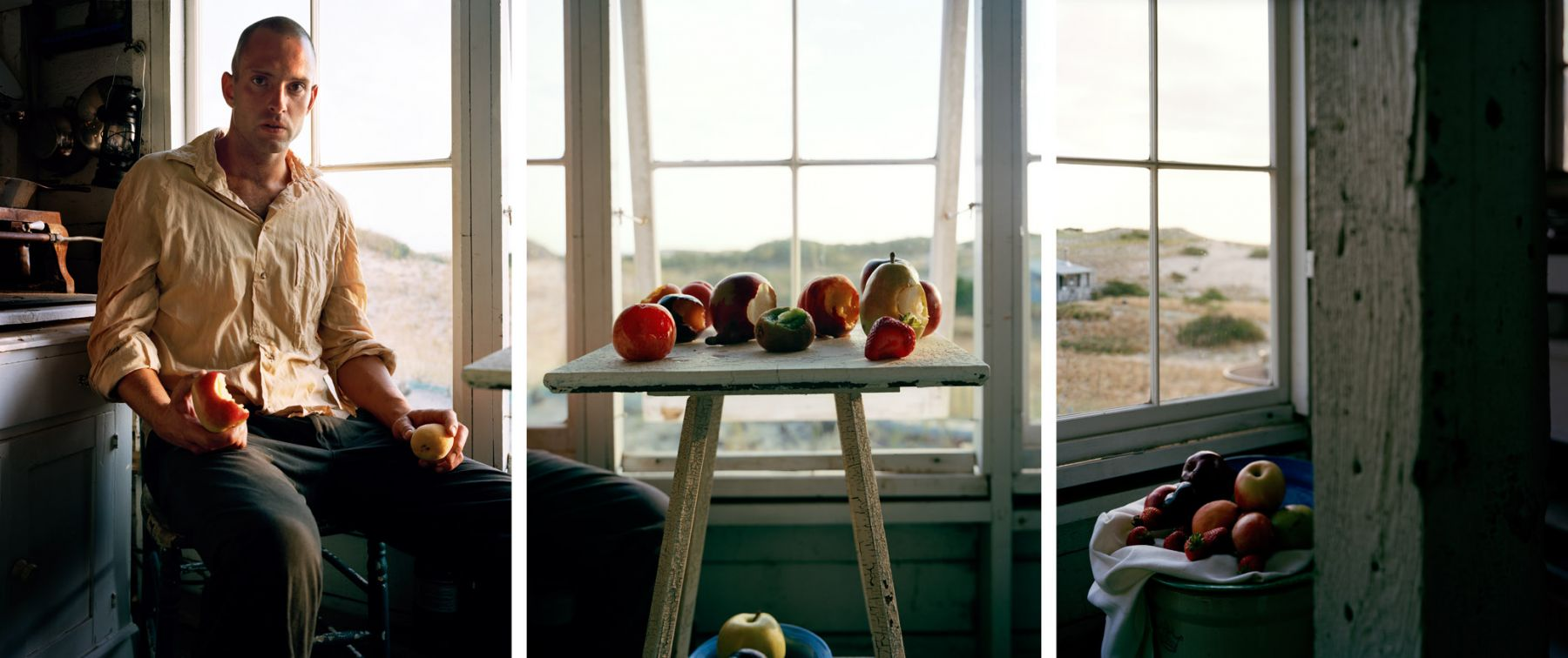 Eric Discerning, 2009. Three-panel archival pigment print, available as 24 x 60 or 40 x 90 inches.