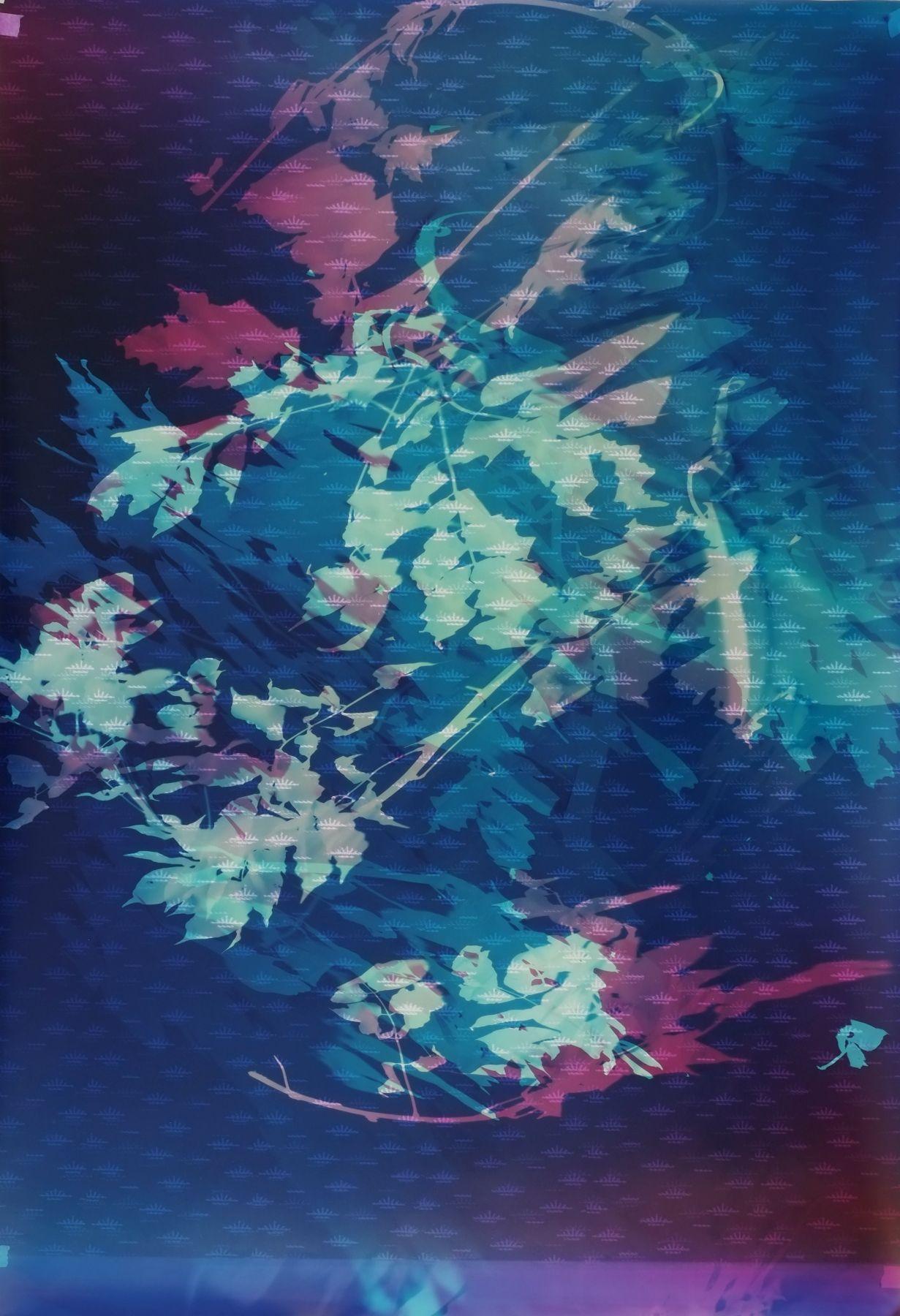 Field Recording (Swamp Submersion I),2016, 60 x 40 inch unique chromogenic print