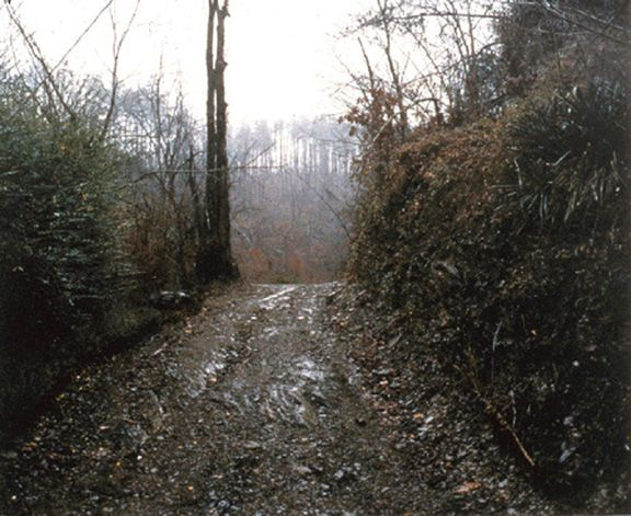 Rasnick Hollow, TN, 1999 Ektacolor print 20 x 24 inches