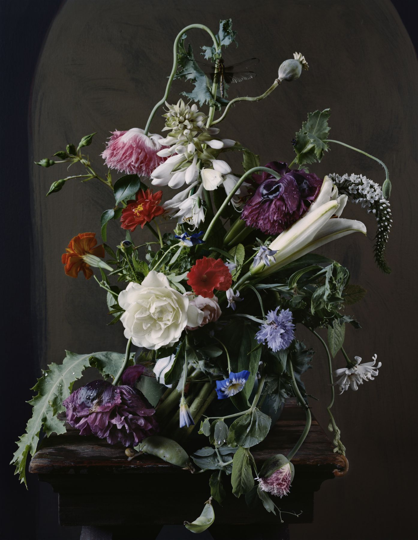 Photograph by Sharon Core titled 1720 from the series 1606-1907 of a floral still life arranged in the style of a classical painting