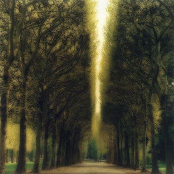 Damme, Belgium, 2004 (4-04-16c-8), 19 x 19 and 28 x 28 inch Chromogenic print, Edition of 15 per size