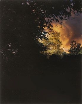 """Field at Dusk #3"", 2008, 20 x 16 inch Chromogenic Print, Edition of 7"