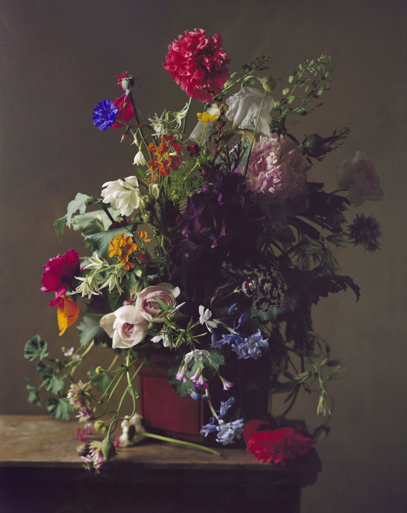 Photograph by Sharon Core titled 1874 from the series 1606-1907 of a floral still life arranged in the style of a classical painting