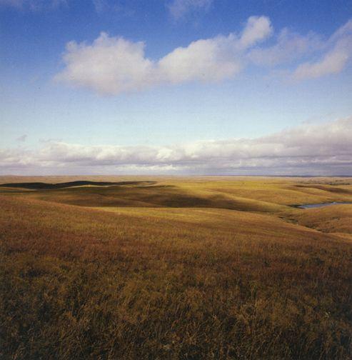 Bluestem grassland, Chase County, Kansas, October 31, 1979, 30 x 30 or 40 x 40 inch chromogenic print
