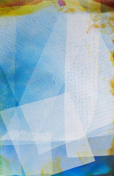 Lattice (Ambient) #119, 2014, 48 x 30 inchunique chromogenic photogram