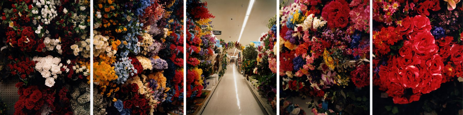 Perennial, 2006. Five-panel archival pigment print, available as 24 x 100 or 40 x 150 inches.