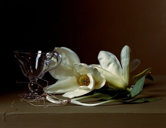 Early American, Magnolia and Wild Leeks, 2008. Chromogenic print, 14 x 17 inches.
